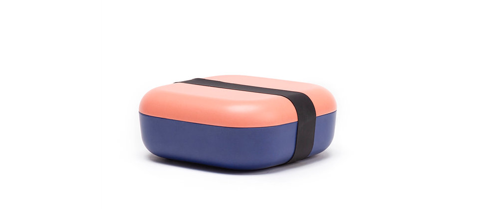 Duo Color Snack Box Coral - Royal Blue
