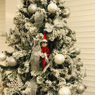Tree with elf