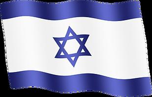 israel waving flag.png