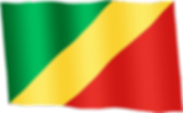 congo-brazzaville waving flag.png