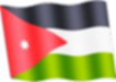 jordan waving flag.png