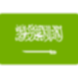 saudi-arabia.png