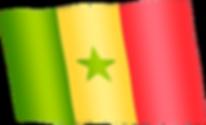 senegal waving flag.png