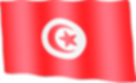 tunisia waving flag.png