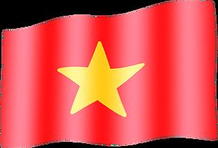 vietnam waving flag.png