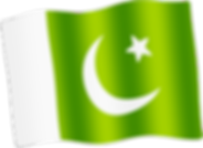 pakistan waving flag.png
