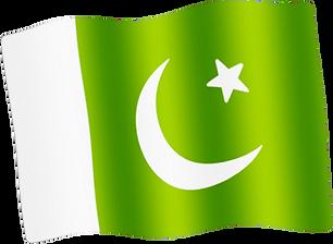 pakistan waving flag.png