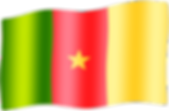 cameroon waving flag.png