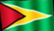 guyana waving flag.png