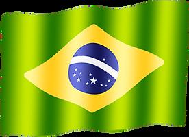 brazil waving flag.png