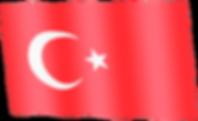 turkey waving flag.png