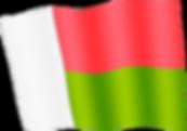madagascar waving flag.png