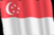 singapore waving flag.png
