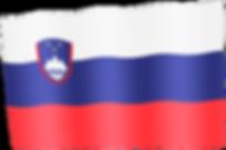 slovenia waving flag.png
