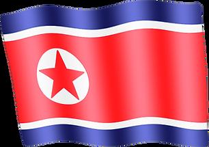 north-korea waving flag.png