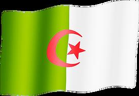 algeria waving flag.png