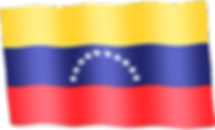 venezuela waving flag.png