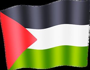 palestine waving flag.png