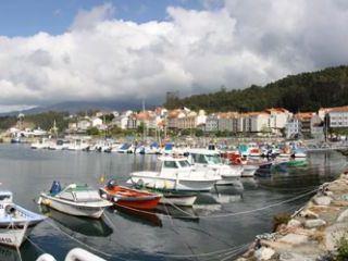 XVI Concurso Nacional Canino Concello de Porto do Son