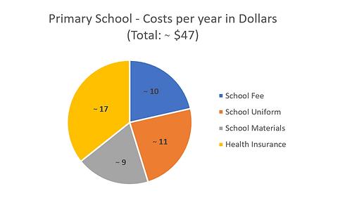 Primary School Fees in Dollars.PNG