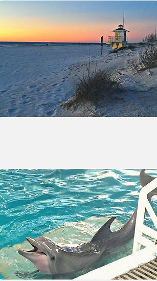 Clearwater 4.jpg
