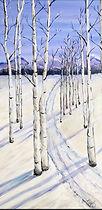 Snow Forest~.jpg