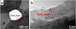 TEM images conformal coating