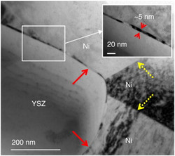 TEM images showing the Ni/Ni GBs