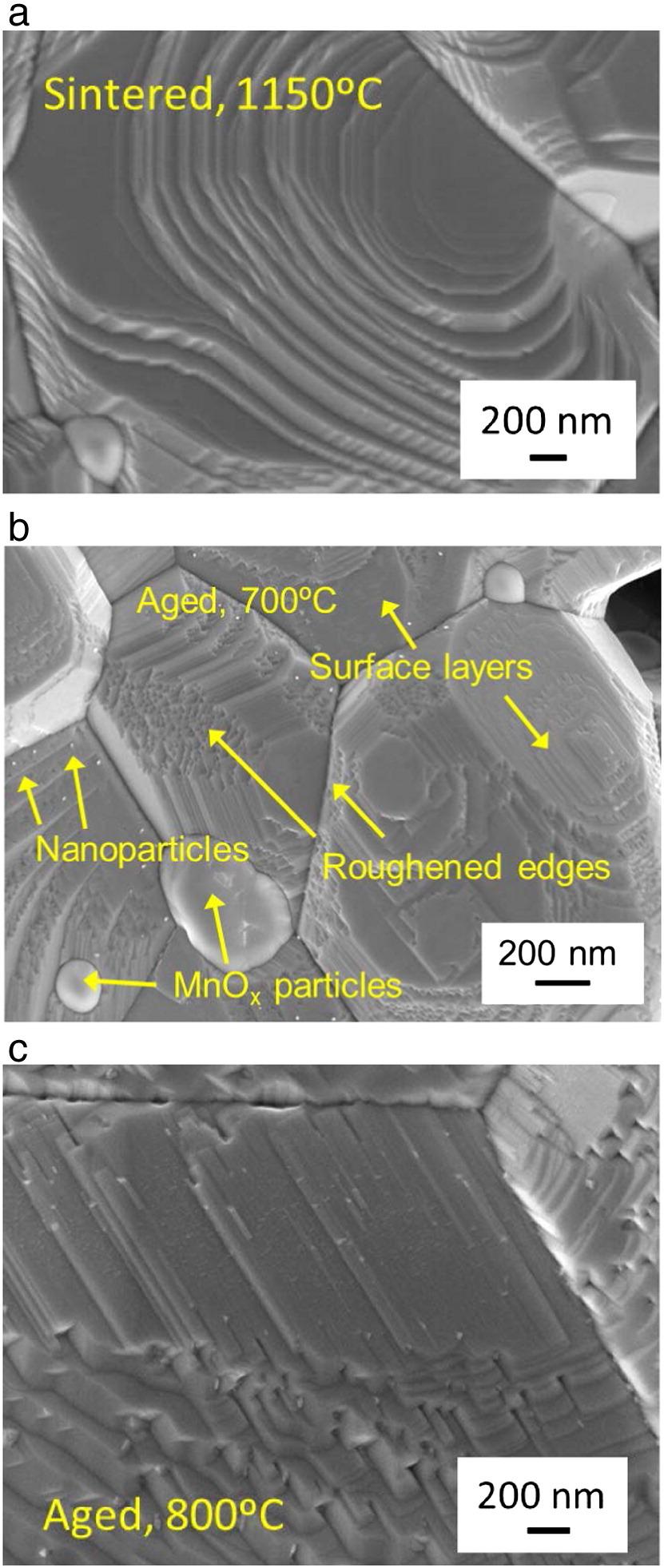 SEM micrographs of dense LSM pellet