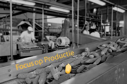 Focus-op-productie.png