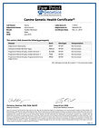 54165_119016_Canine_Genetic_Health_Certi