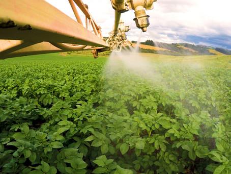 Nutrição foliar para altas produtividades