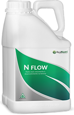 N Flow_01 (4).png