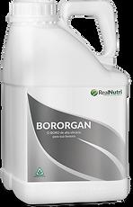 Bororgan_04.png