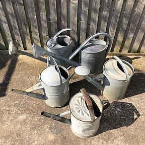 Old Watering Cans