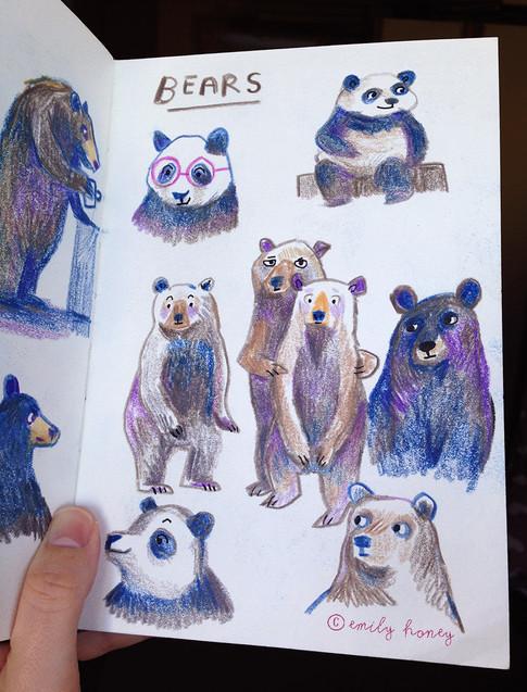 Bears sketchbook