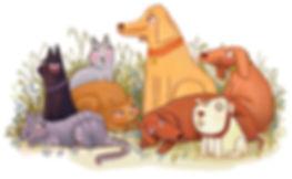 Cats v Dogs illustration by Emily Honey