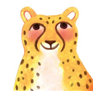 cropped cheetah head