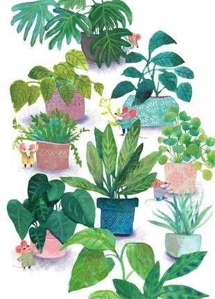 house plant_MICE version_5x7ratio_print
