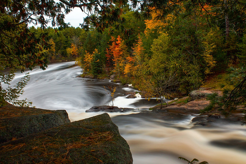 flowing water through fall woods photograph