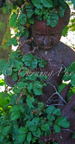 ivy covered statue