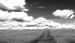 black and white path to the clouds