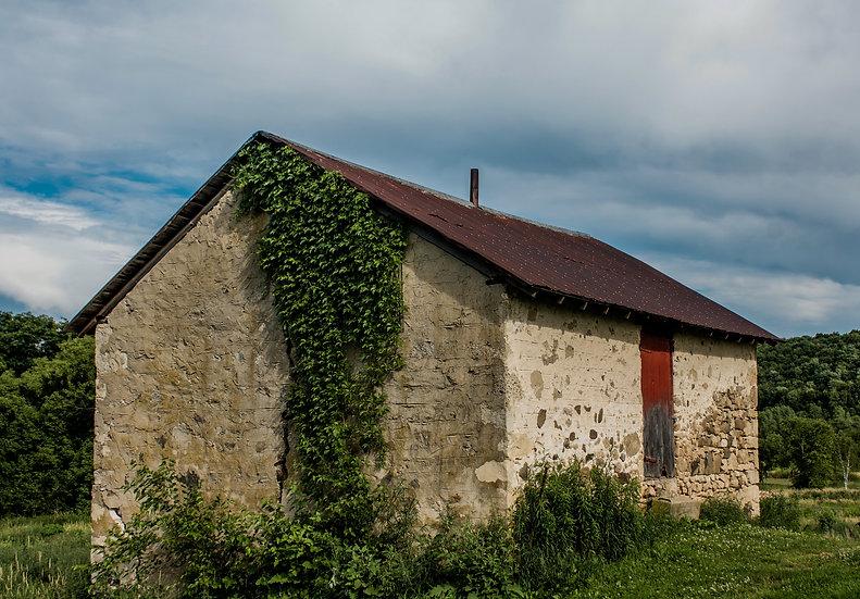 Stone House Ivy