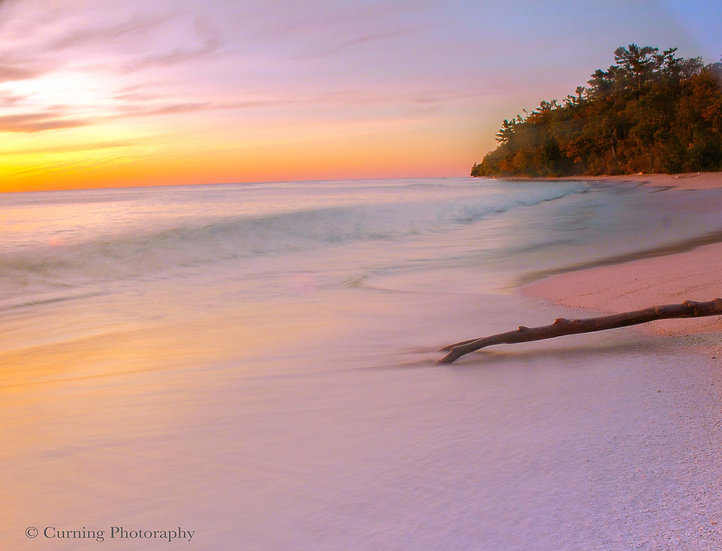 Photograph of sunrise on a beach with a log in the foreground and trees in the background