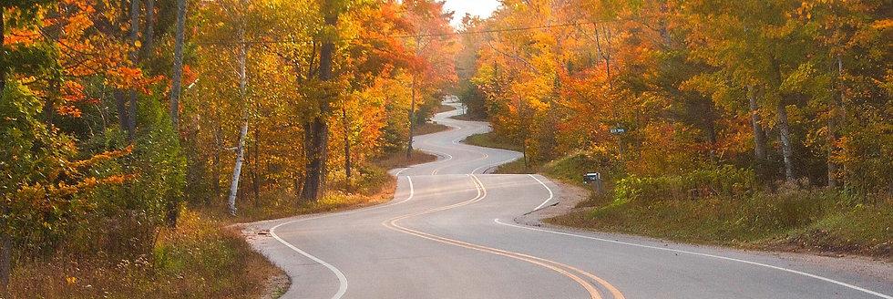 Curvy Road PANORAMIC