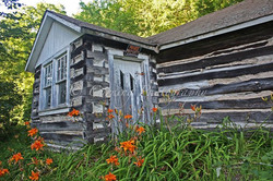 log cabin with orange lilies