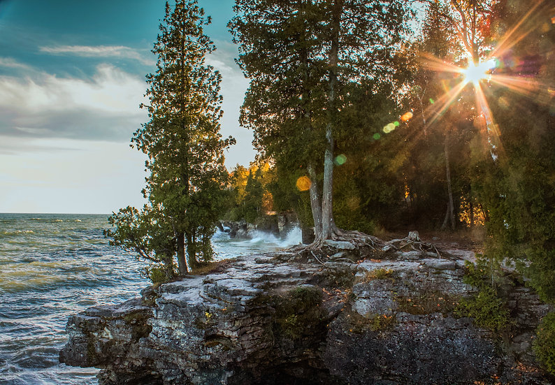 photograph of waves crashing on a wooded cliff with sunbeams