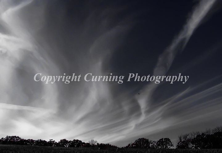 black and white clouds and trees