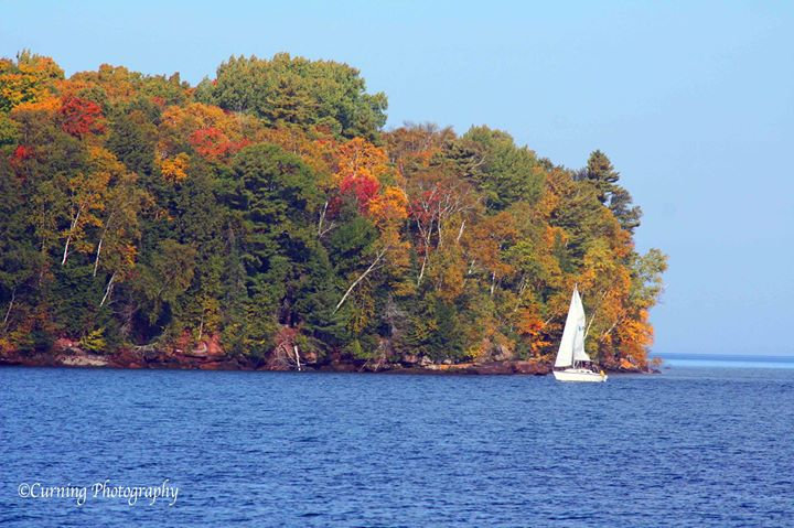 photograph of a white sailboat on the water with green and fall trees in the background