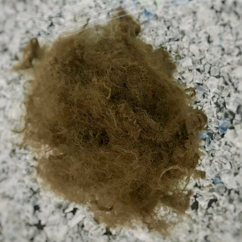 7D HS Brown recycled polyester staple fiber